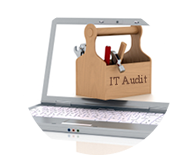 I.T. Audit and Assessment